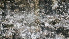 Fundo de pedra cinzento da textura Fotografia de Stock