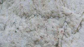 Fundo de pedra cinzento da textura Fotos de Stock