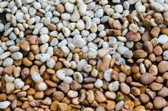 Fundo de pedra da textura Imagens de Stock