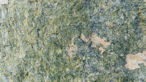 Fundo de pedra da textura Serpentinite Fotografia de Stock Royalty Free