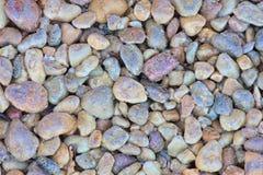 Fundo de pedra do seixo Imagens de Stock