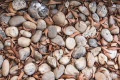 Fundo de pedra pequeno Imagem de Stock Royalty Free