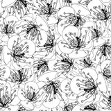 Fundo de Plum Blossom Flower Outline Seamless Ilustração do vetor ilustração royalty free