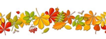 Fundo de queda da folha do outono sem emenda da beira isolado no branco Imagens de Stock Royalty Free