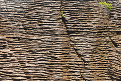 Fundo de rochas da panqueca de Punakaiki, NZ Imagens de Stock Royalty Free