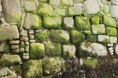 Fundo de rochas velhas Imagens de Stock Royalty Free