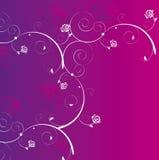 Fundo de Rosa Imagem de Stock Royalty Free