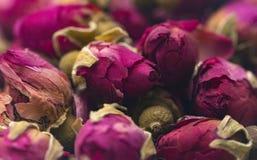 Fundo de Rose Buds secada fotografia de stock