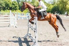 Fundo de salto da competição do cavaleiro Fotos de Stock Royalty Free