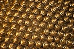 fundo 025 de shell dourados Foto de Stock