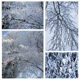 Fundo de Snowy White Foto de Stock Royalty Free