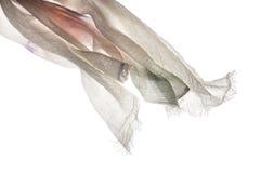 Fundo de sopro do branco do vento de Sjawl Imagem de Stock Royalty Free