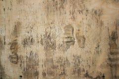 Fundo de superfície da textura da madeira compensada Fotos de Stock