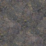 Fundo de superfície textured sem emenda à terra sob a textura brilhante da luz solar/close up Fotos de Stock