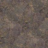 Fundo de superfície textured sem emenda à terra sob a textura brilhante da luz solar/close up Imagem de Stock Royalty Free