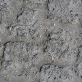 Fundo de superfície textured sem emenda à terra sob a textura brilhante da luz solar/close up Fotos de Stock Royalty Free