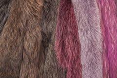 Fundo de uma textura da pele do pele-rolamento caro Imagens de Stock Royalty Free