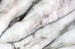 Fundo de uma textura da pele do pele-rolamento caro Foto de Stock
