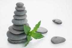 Fundo de uns termas com pedras Imagem de Stock