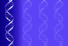 Fundo do ADN Fotos de Stock