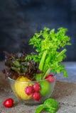 Fundo do alimento biológico Vegetais na obscuridade Imagens de Stock