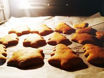 Fundo do alimento de cookies caseiros do pão do gengibre do Natal tradicional Imagens de Stock Royalty Free