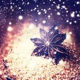 Fundo do alimento do Natal Anis do açúcar mascavado e de estrela em um baki Imagem de Stock