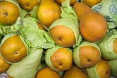 Fundo do alimento - peras douradas de Bosc igualmente conhecidas como peras de Kaiser Imagem de Stock