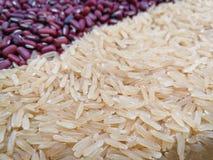 Fundo do arroz e do feijão vermelho Fotografia de Stock