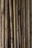 Fundo do bambu Imagens de Stock Royalty Free