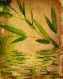 Fundo do bambu do vintage Foto de Stock Royalty Free