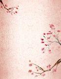 Fundo do blossomm da ameixa fotografia de stock