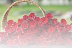 Fundo do borrão da rosa do vermelho Foto de Stock