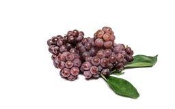 Fundo do branco das uvas vermelhas Foto de Stock Royalty Free
