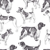 Fundo do cão Imagens de Stock Royalty Free