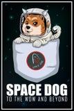 Fundo do cão do espaço Foto de Stock