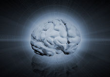 Fundo do cérebro Imagem de Stock