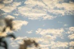 Fundo do céu azul na manhã Fotos de Stock