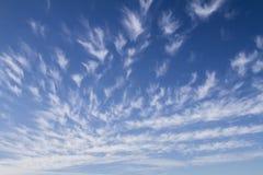 Fundo do céu com as nuvens de cirro brancas imagem de stock royalty free