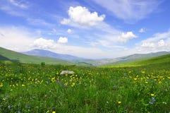 Fundo do céu, da grama e da montanha fotos de stock