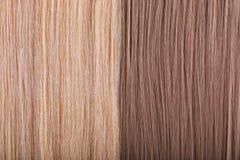 Fundo do cabelo reto. Cabelo escuro e leve Imagem de Stock