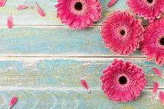 Fundo do cartão da flor da margarida do Gerbera para o dia da mãe ou da mulher Estilo do vintage Vista superior imagens de stock royalty free