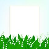 Fundo do cartão da mola com o lírio do vale Imagens de Stock Royalty Free