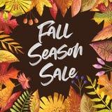 Fundo do cartão de Autumn Colors Fall Season Sale ilustração royalty free