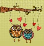 Fundo do cartão de casamento do amor da coruja Fotos de Stock Royalty Free