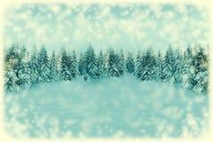 Fundo do cartão do White Christmas Paisagem da floresta da queda de neve com espaço da cópia Paisagem do inverno com os abeto cob imagem de stock