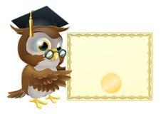Fundo do certificado do diploma da coruja Fotografia de Stock