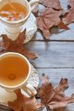 Fundo do chá do outono Fotos de Stock
