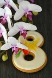 Fundo do cinza 8 de março do pão-de-espécie e da orquídea Fotos de Stock