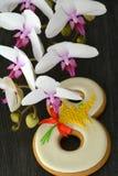 Fundo do cinza 8 de março do pão-de-espécie e da orquídea Foto de Stock Royalty Free
